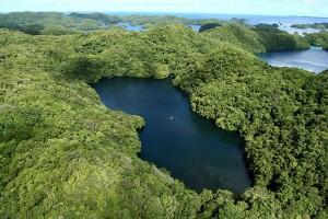 Jellyfish Lake - вид с высоты полёта