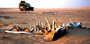 В деревню химба через пустыню Намиб