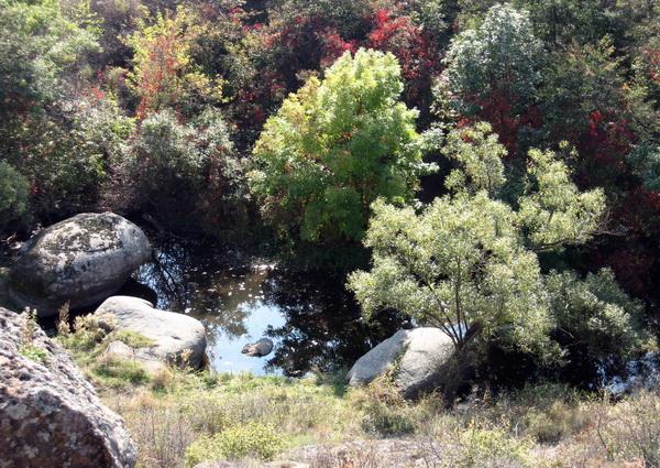 Как добраться в Актовский каньон самостоятельно