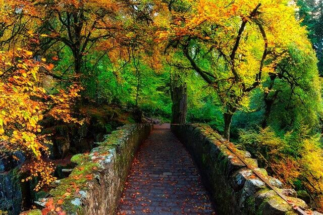 Осень в Шотландии - лучшие места для посещения с красивыми осенними фото