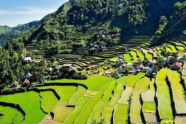 Террасы Банауэ на Филиппинах - история их создания