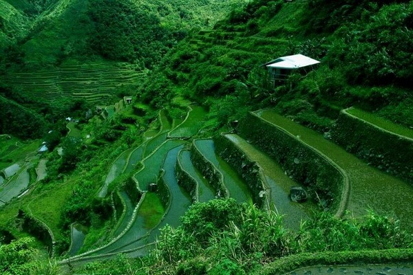 Террасы Банауэ на Филиппинах - как добраться