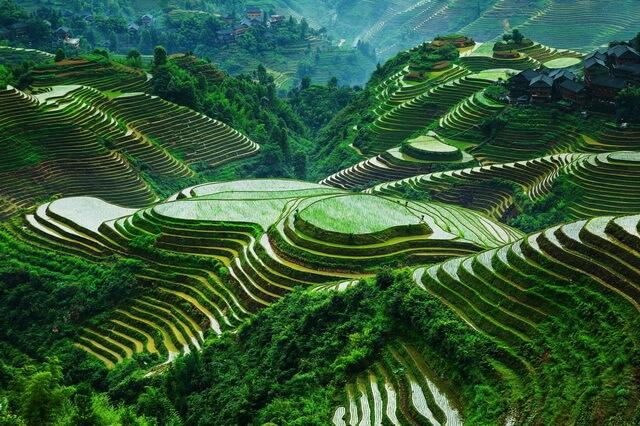 Банауэ – рисовые террасы Филиппин