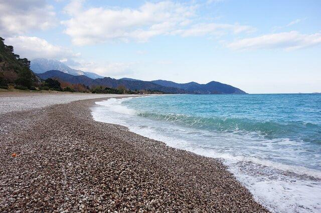 Рождение черепах на пляже Чиралы в Турции