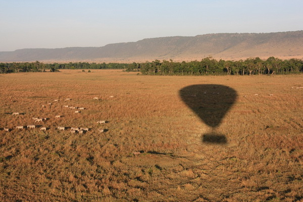 Полёт на воздушном шаре в Африке, в парке Масаи-Мара