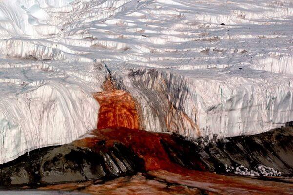 История открытия Кровавого водопада ледника Тейлора в Антарктиде