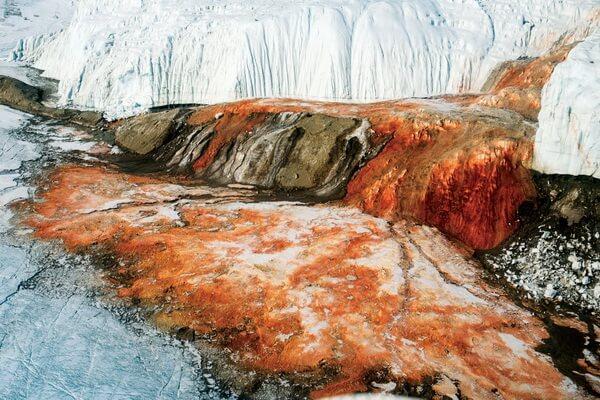 Почему водопад в Антарктиде Кровавый и есть ли жизнь в его водах