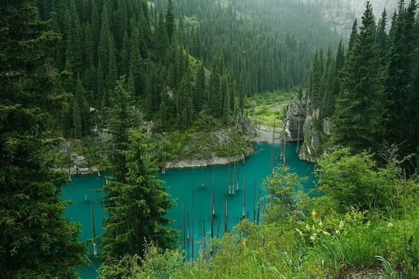 Чудеса природы Казахстана с фото и описанием - Озеро Каинды