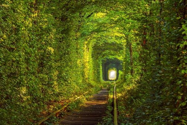 Достопримечательности Восточной Европы - красивые места с фото - Туннель Любви в Украине