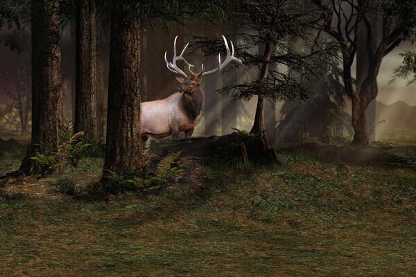 Животные Норвегии с фото и описанием - Благородный олень