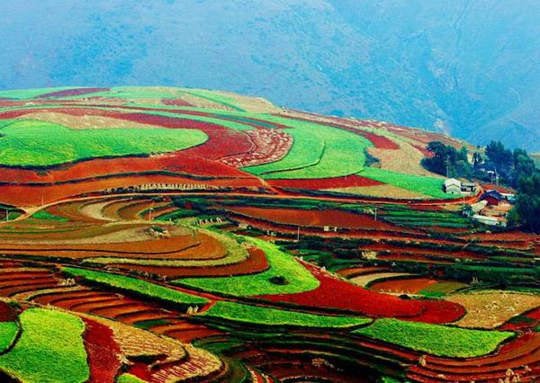 Цветные поля Лончуань, Китай