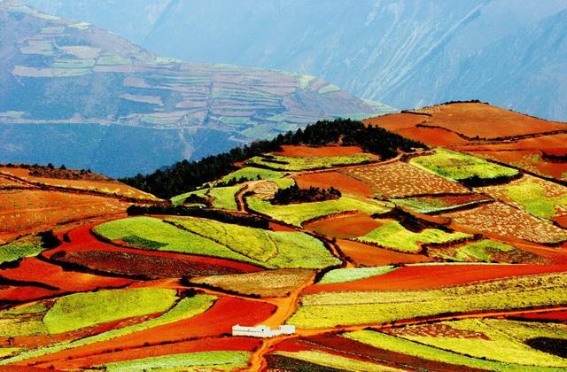 Уникальные цветные поля Дончуань в Китае