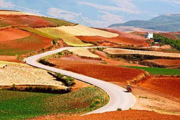 Цветные поля в Китае