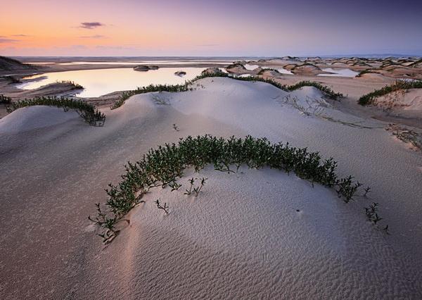 Песчаные дюны острова Фрейзер