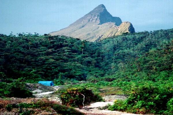 Самые высокие горы Бразилии с фото и описанием - Пико-Фелпс или Гора «31 марта»
