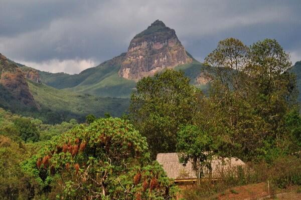 Горы Эфиопии - Туллу Димту
