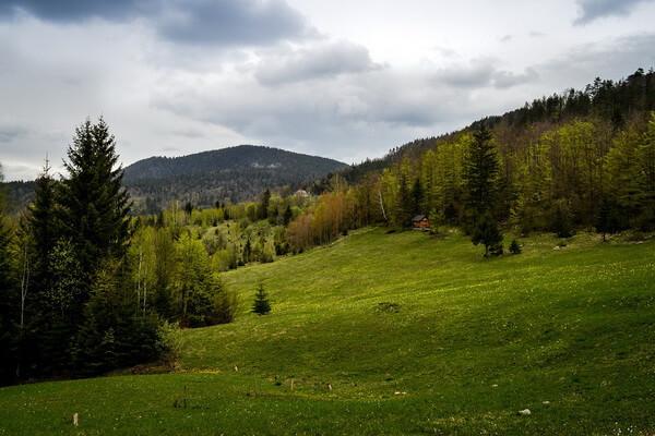 Горы в Сербии с фото и описанием - Тара