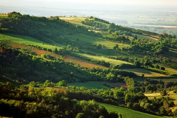 Горы в Сербии с фото и описанием - Фрушка-Гора