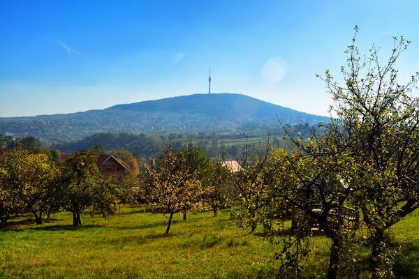 Горы в Сербии с фото и описанием - Авала