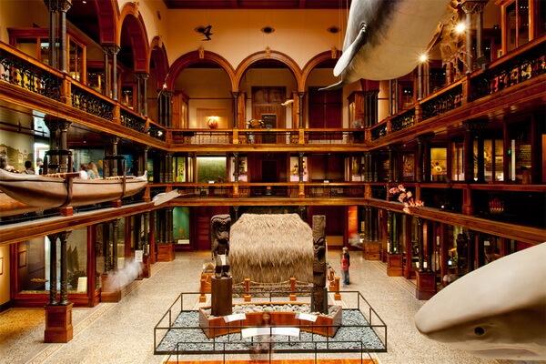 Экспозиции музея Бишопа на Гавайях