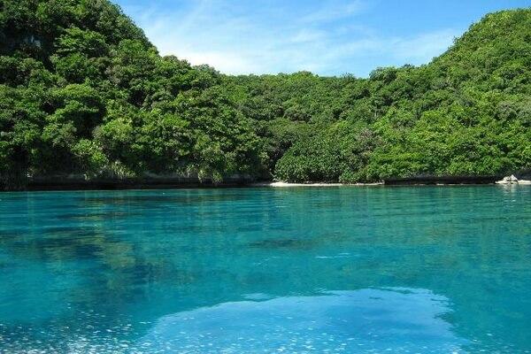 Остров Кокос - родина многих эндемичных видов