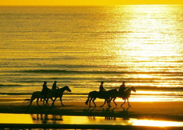Конные прогулки по Крыму на закате