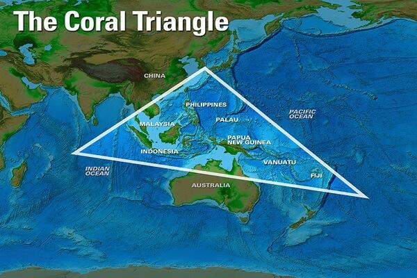 Коралловый треугольник на карте мира