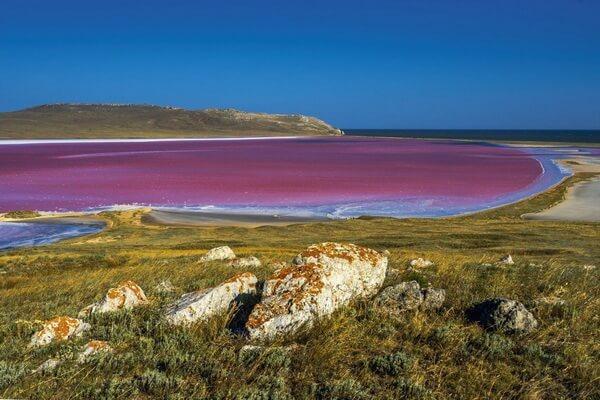Когда Кояшское озеро в Крыму становится розовым