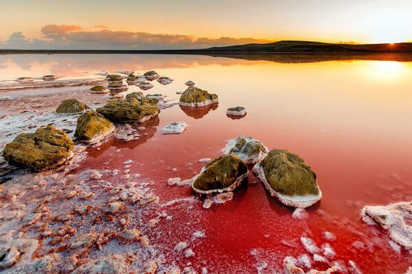 Иные розовые озёра мира - Кояшское озеро в Крыму