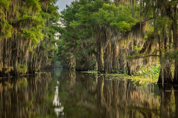 Озеро Каддо в Техасе - история возникновения