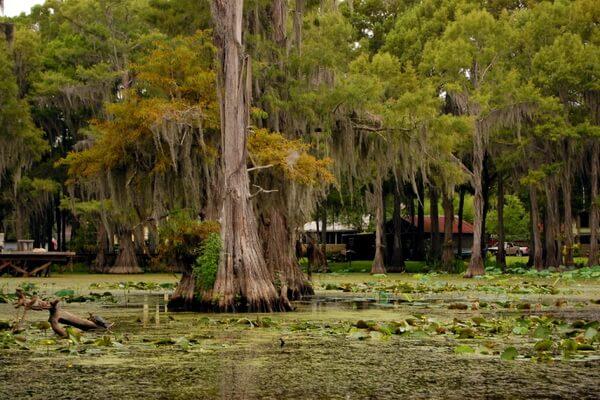 Город Uncertain (Неопределённый) на берегу озера Каддо в Техасе
