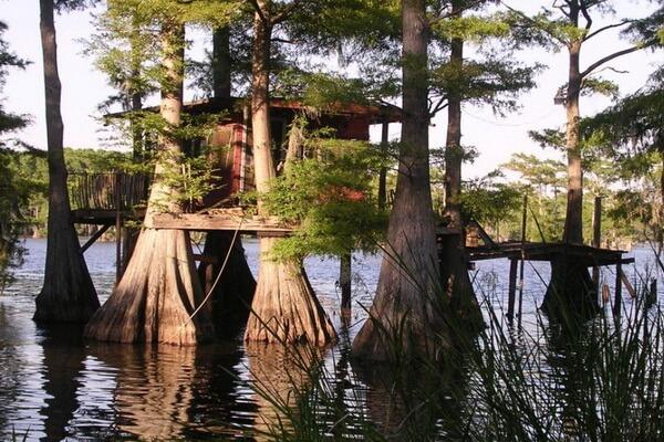 Аренда домика на озере Каддо