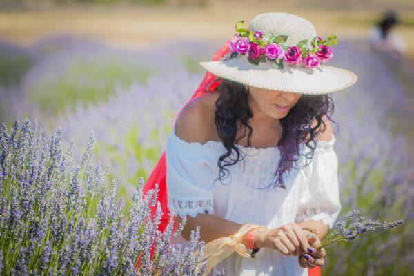 Когда цветёт лаванда в Турции