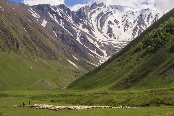 Маршруты походов по Грузии с фото и описанием мест - Долина Трусо