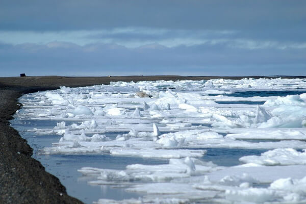 Температура вод моря Бофорта