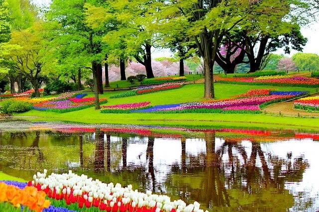 Самые красивые сады и парки Европы - шедевры ландшафтного дизайна