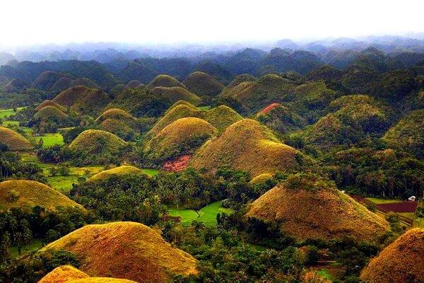 Необычные пейзажи с фото и описанием - Шоколадные холмы на Филиппинах