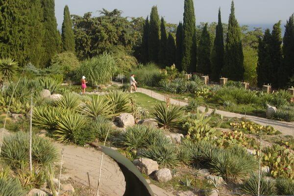 Экскурсии в Никитский ботанический сад
