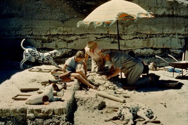 Раскопки династии археологов Лики в ущелье Олдувай в Танзании