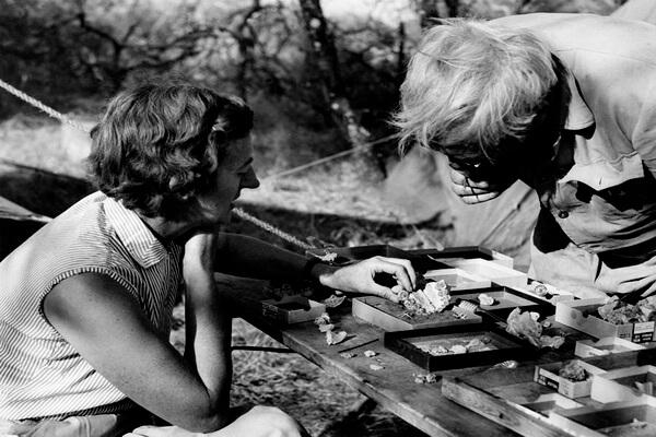 Раскопки в ущелье Олдувай Луиса и Мэри Лики