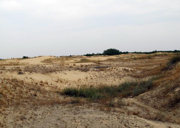 Пустыня Олешковские пески - как добраться
