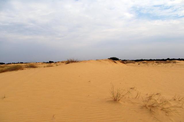 Пустыня Олешковские пески