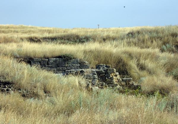 Раскопки древней Ольвии