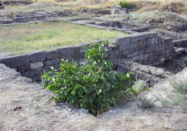 Раскопки древнегреческого города Ольвия