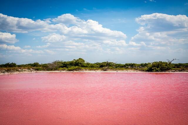 Лас-Колорадас - розовое озеро Юкатана в Мексике