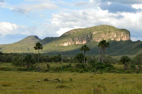 Природные достопримечательности Бразилии с фото и описанием - Национальный парк Шапада-дус-Веадейрус