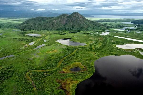 Природные достопримечательности Бразилии с фото и описанием - Пантанал