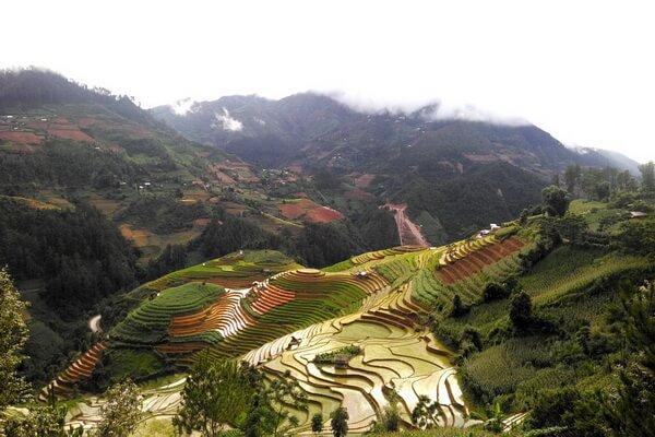 Поездка на рисовые поля Вьетнама