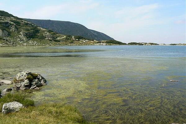 Семь Рильских озёр Болгарии с фото и названиями - Рыбное озеро