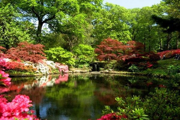 Сады Эксбери в Англии - красивые фото